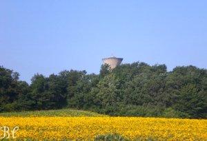 Château d'eau vu de Fillol